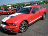 Ford Mustang GT Shelby GT500