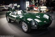 Jaguar Type D